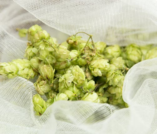 We need your hops!