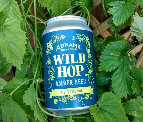 Wild Hop is back!