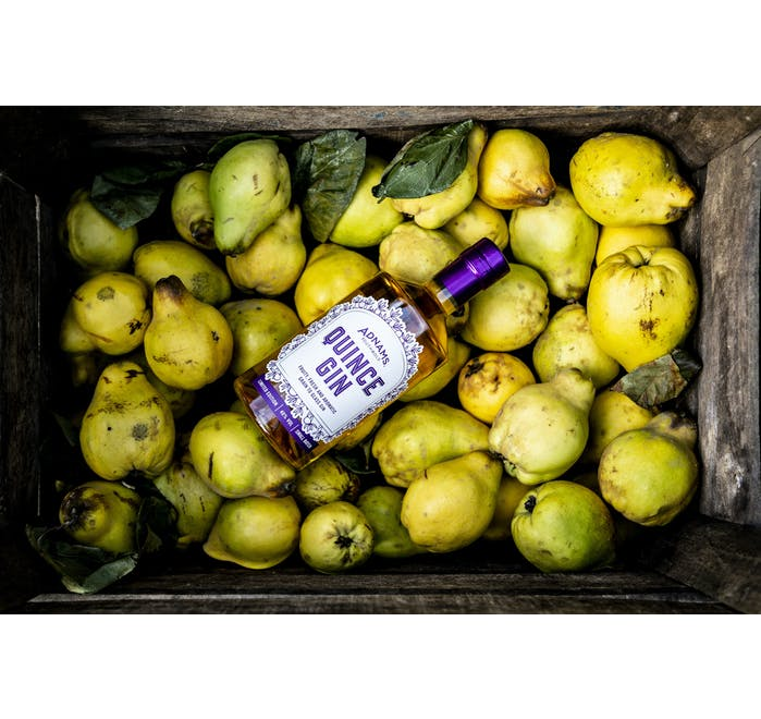 Adnams Quince Gin - from Adnams