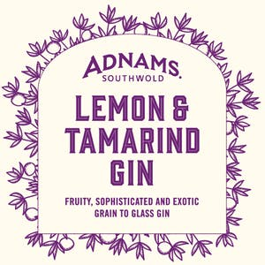 Lemon and Tamarind Gin