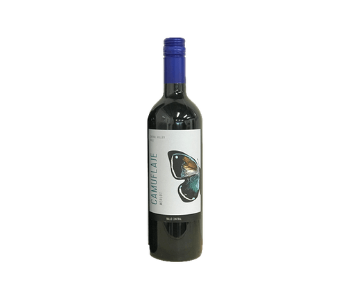 Merlot, Camuflaje, Central Valley, Chile